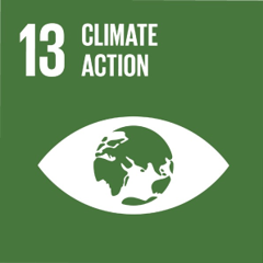 United Nations Goal 13 Climate Action