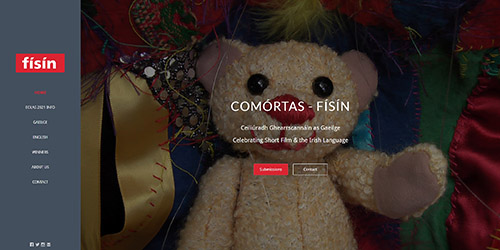 A screenshot of Físín's website
