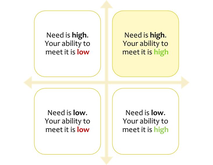 Target Market Selection Grid
