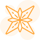 An orange silhouette icon of an abstract image somewhat reflecting a flower