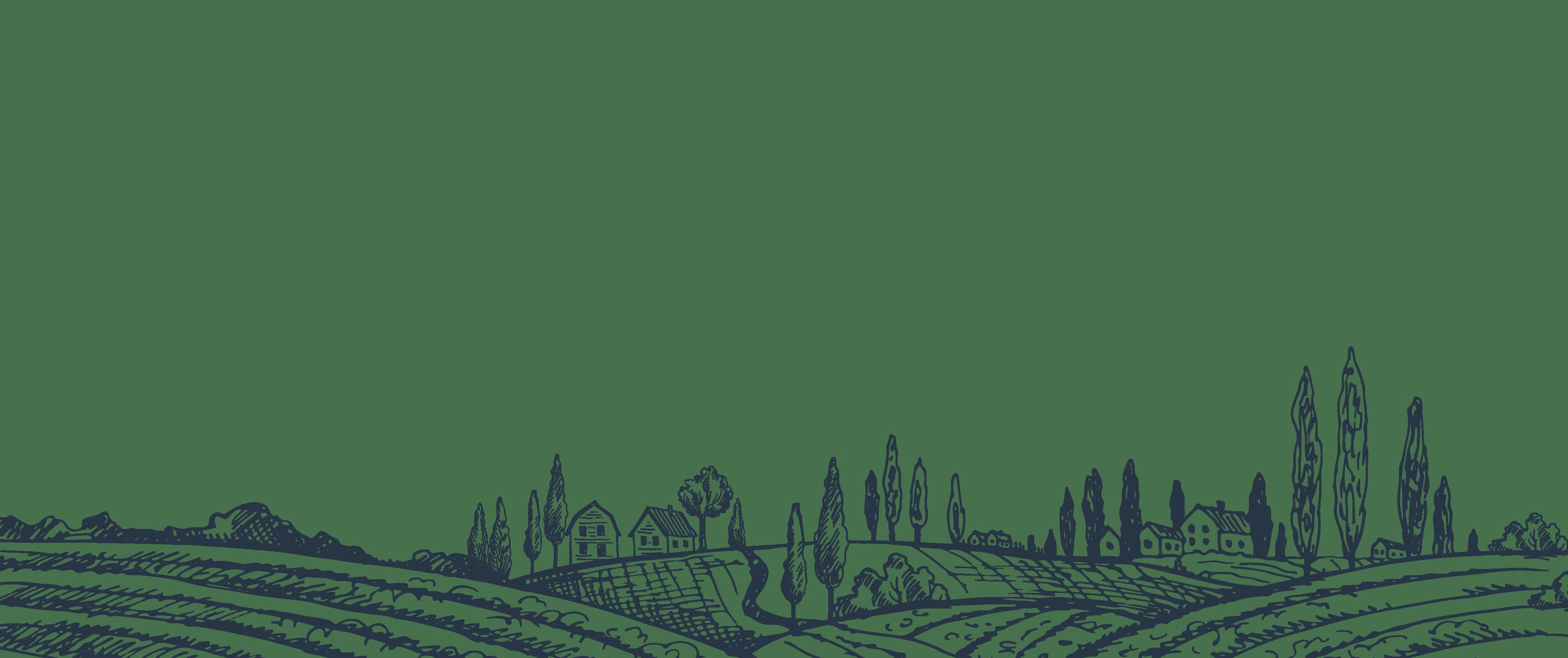 custom farm illustration for agtech marketing company