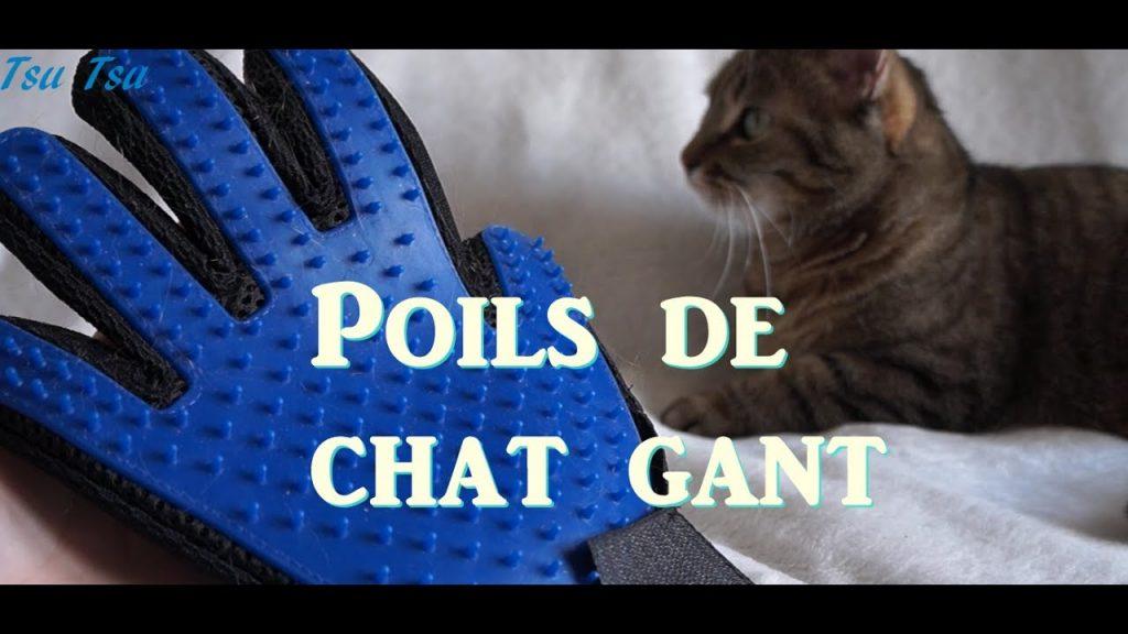 publicite-gants-poils-chat