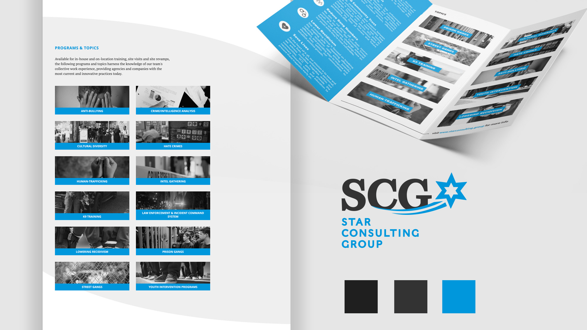 Star Consulting Group