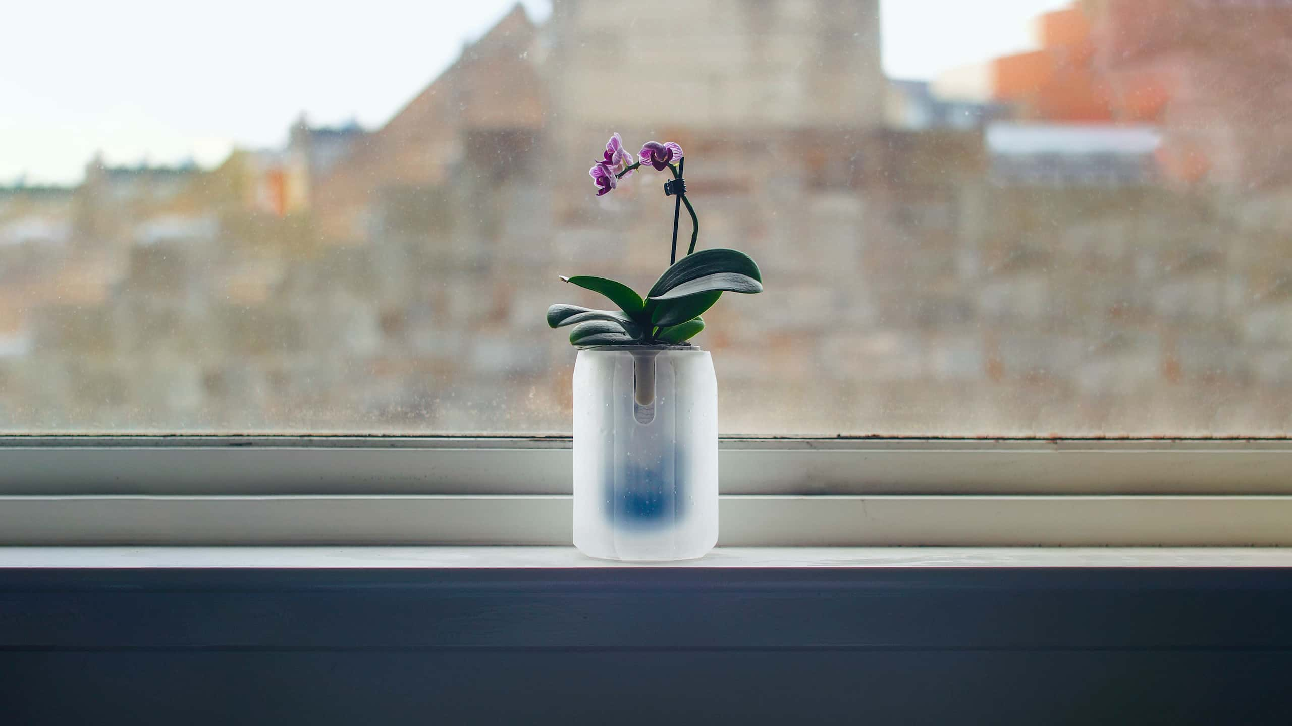 A new-age material experiment through the form of an eight-sided cast glass orchid vase, that indicates the plant's water level using a hydrochromic coated inner cylinder that reveals a deep blue on contact with water — translating the plant's chemical state into a physical impression on the product's material.