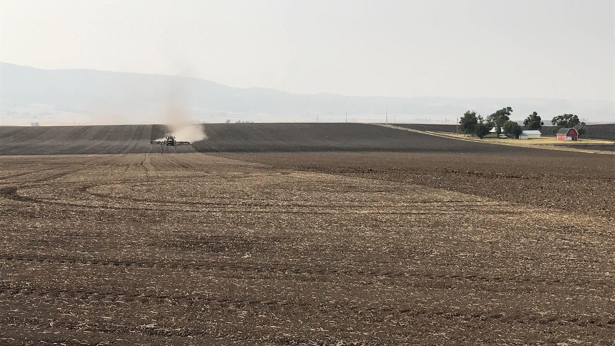 Seeding A Field Image