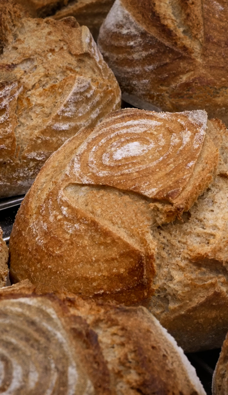 Loaves of sourdough bread baked at our classes
