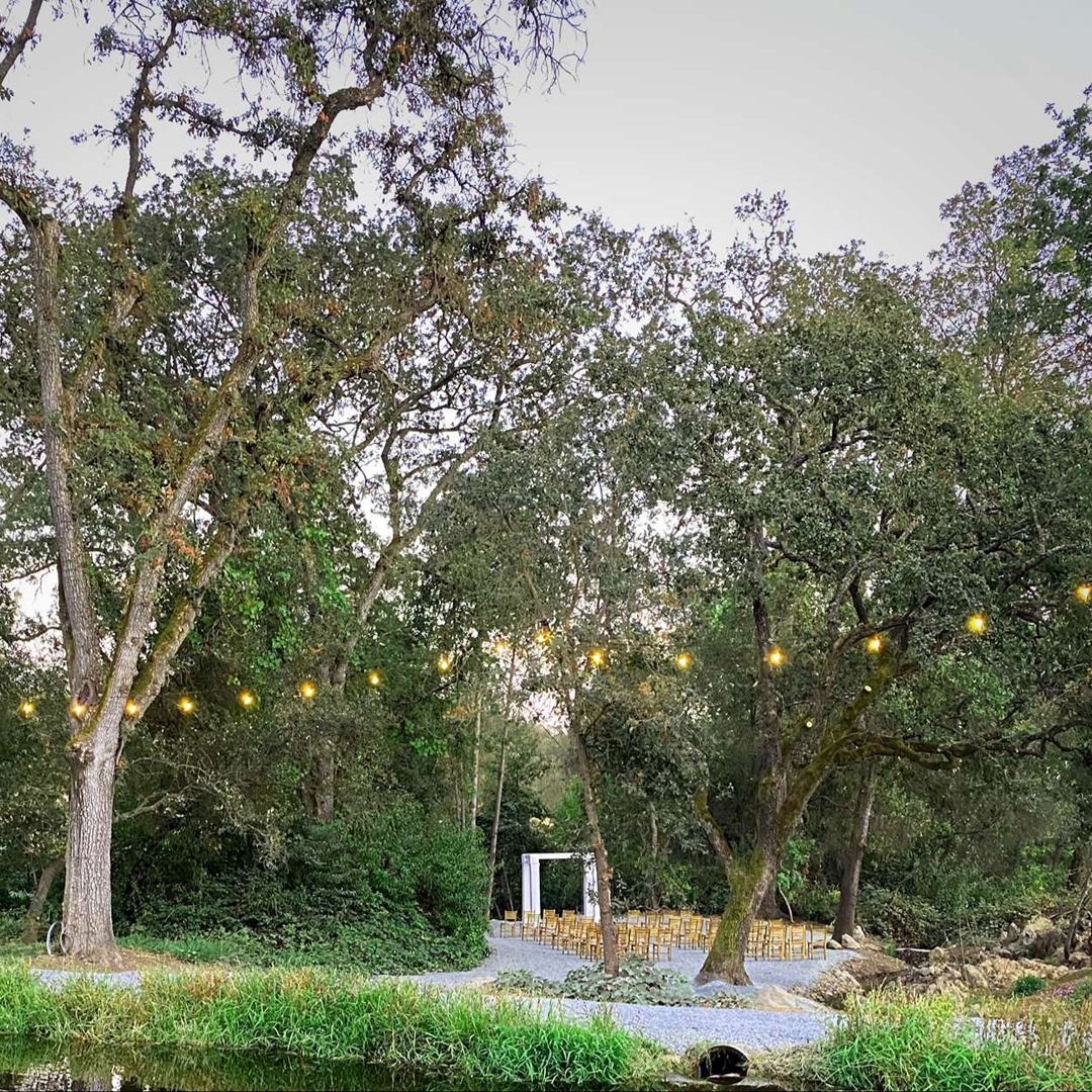 Looking across the pond at the creekside ceremony site under oak trees and with wedding arbor and wedding lighting