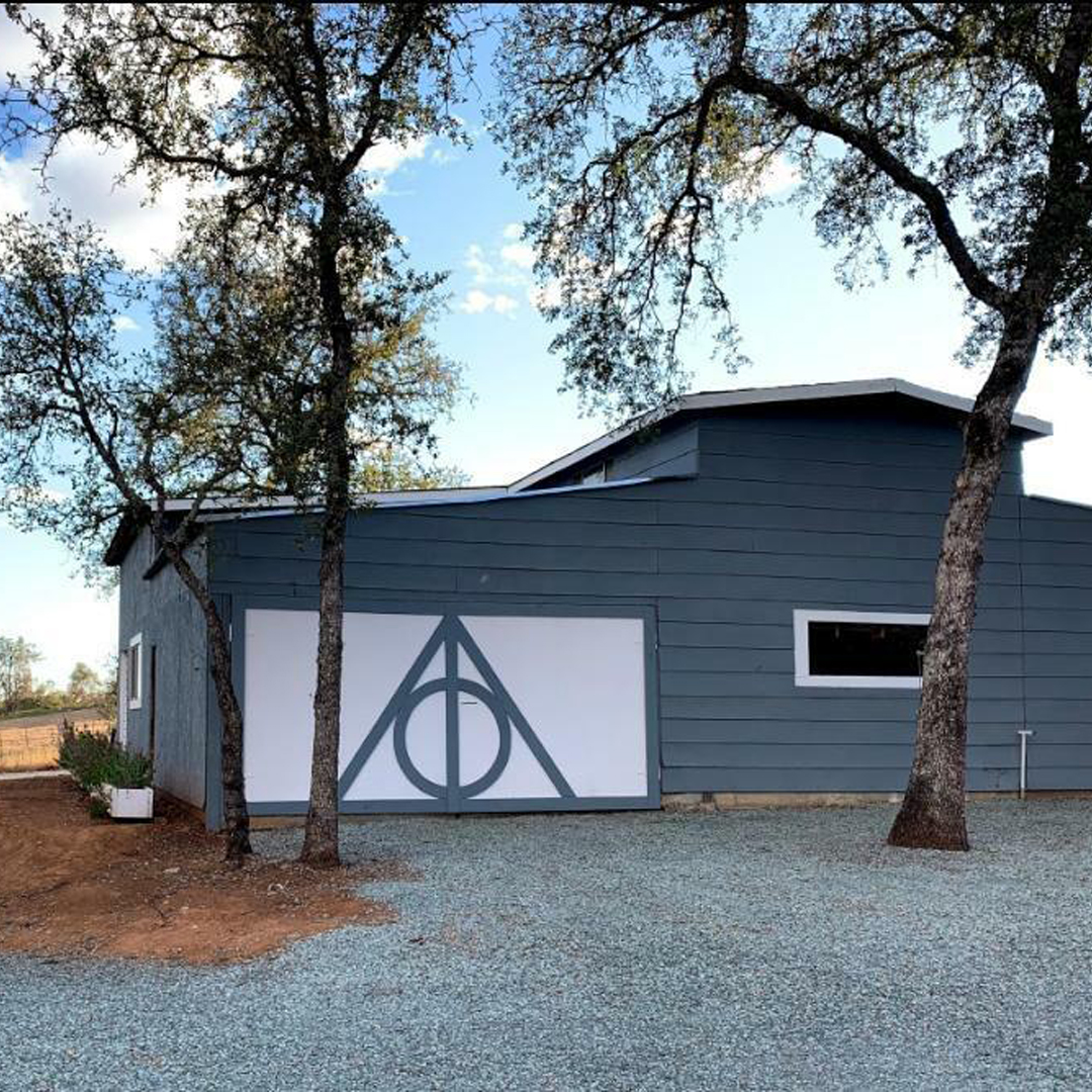 Custom barn doors for wedding photo ops with Harry Potter Deathly Hallows symbol