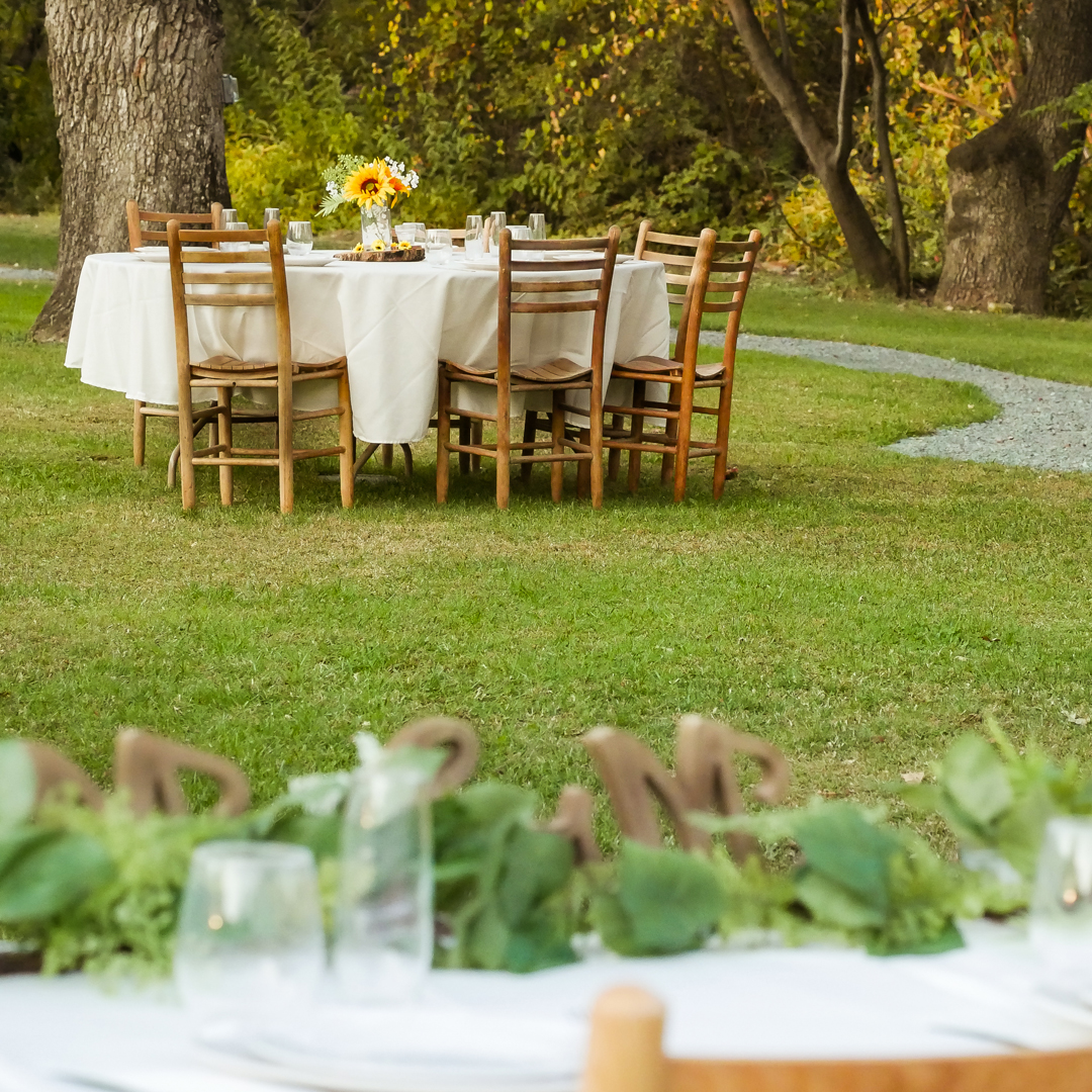 A natural setting wedding, looking out over head table at a sunflower decor tablescape and oak trees