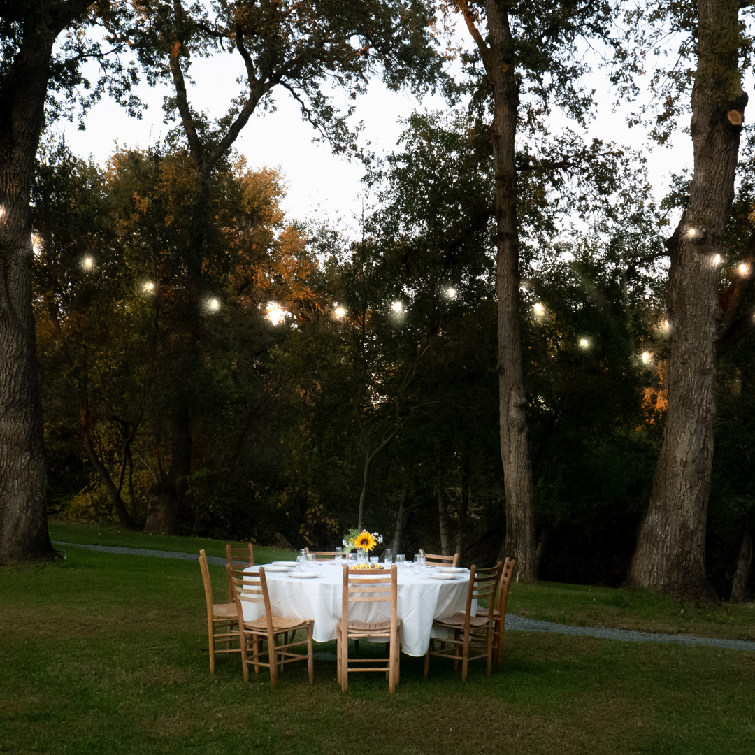 Wedding lights at dusk hanging over a wedding table with decor