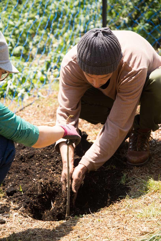 男性と女性が漆の木を植えている様子