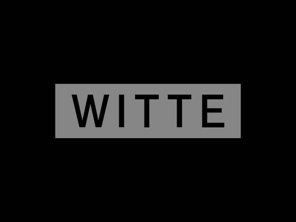 Witte Projektmanagement