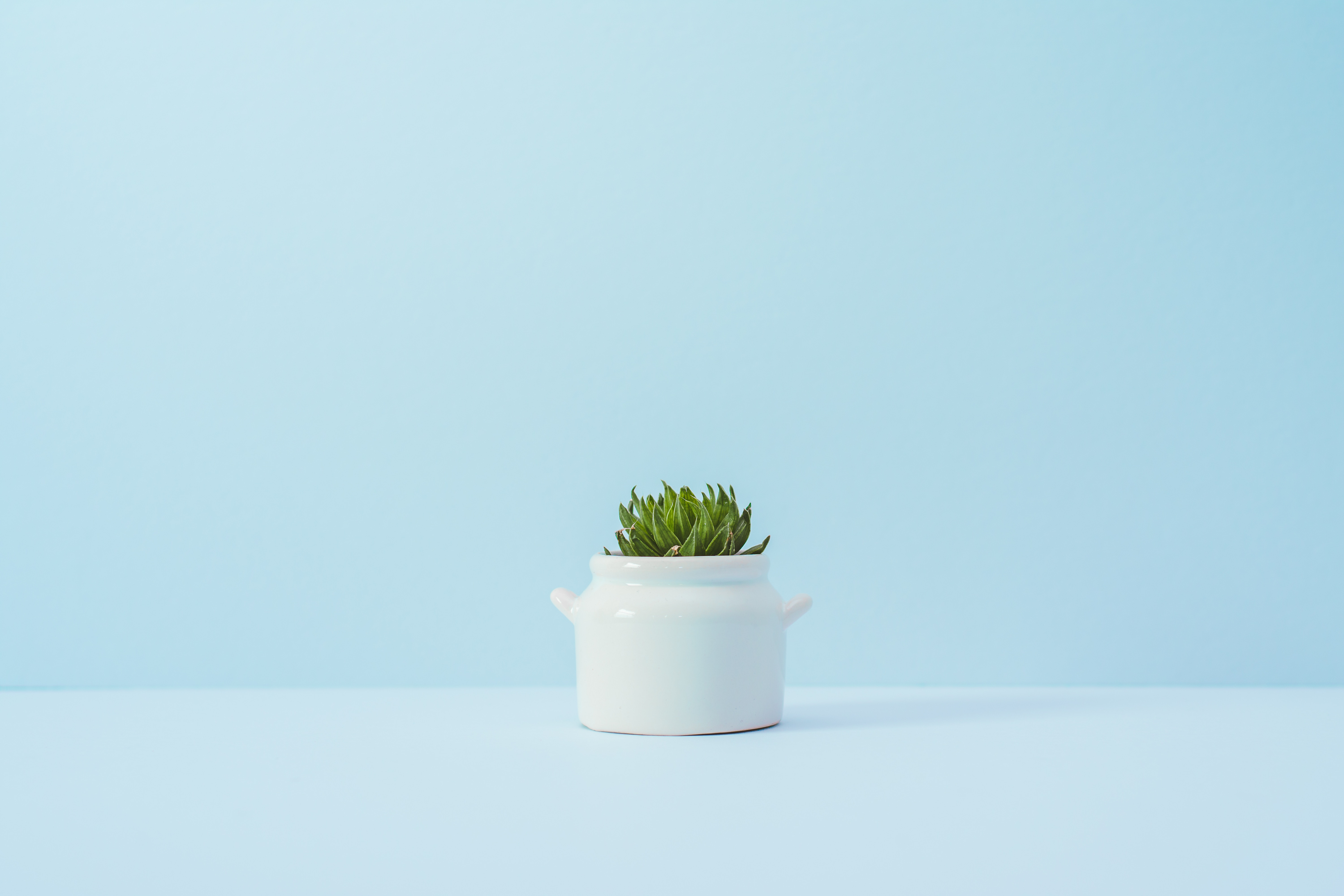 How to Apply Minimalism to Save Money and Your Life
