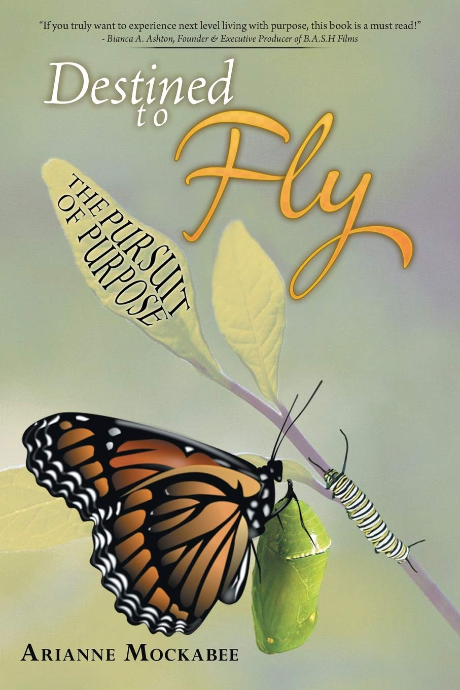 Cover art for Arianne Mockabee's book Destined to Fly