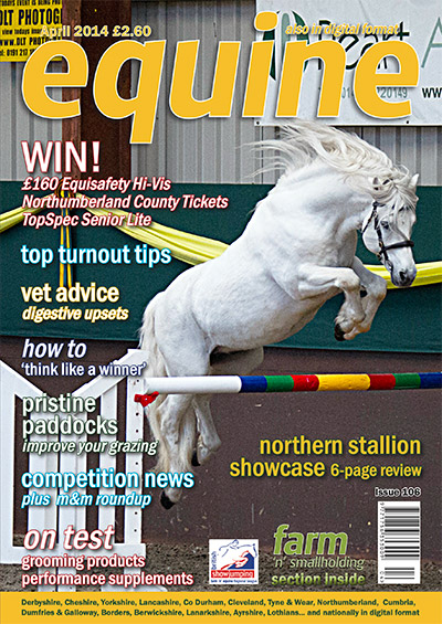 Equine Article featuring Logic