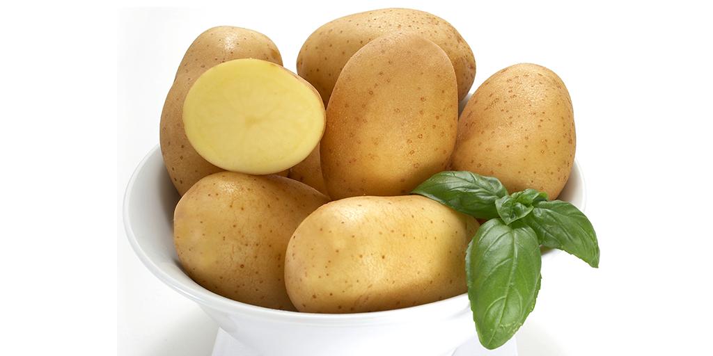 Yellow Potato Varieties from SunRain