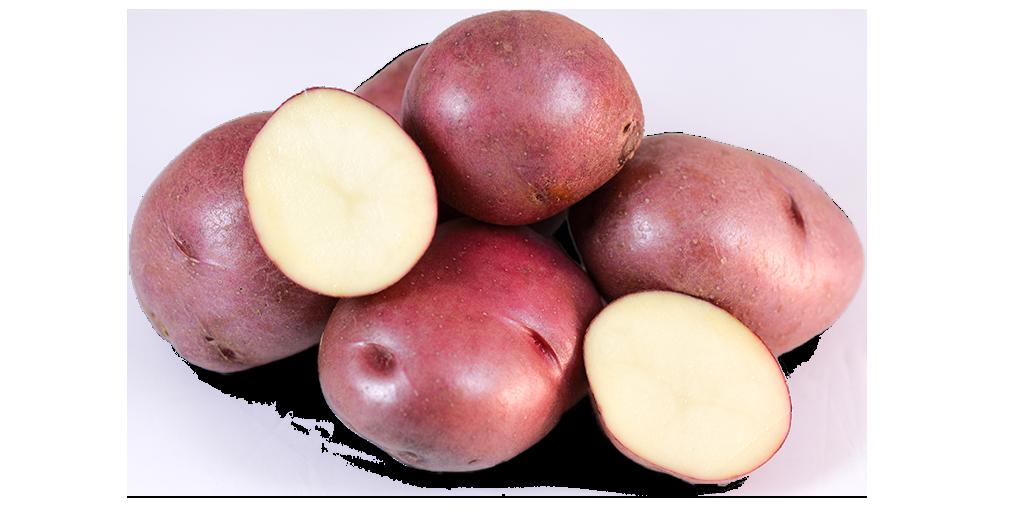 Red Potato Varieties from SunRain