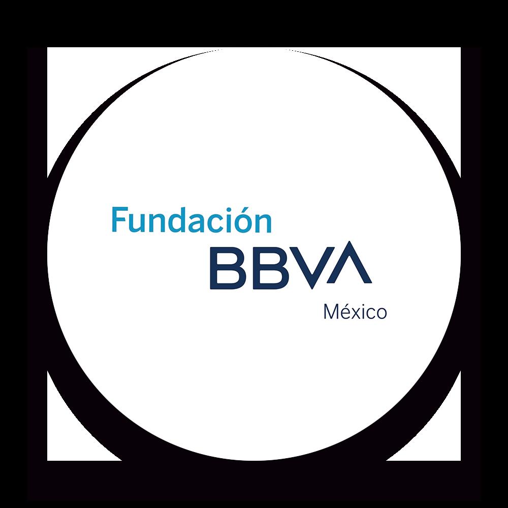 Fundacion BBVA logo