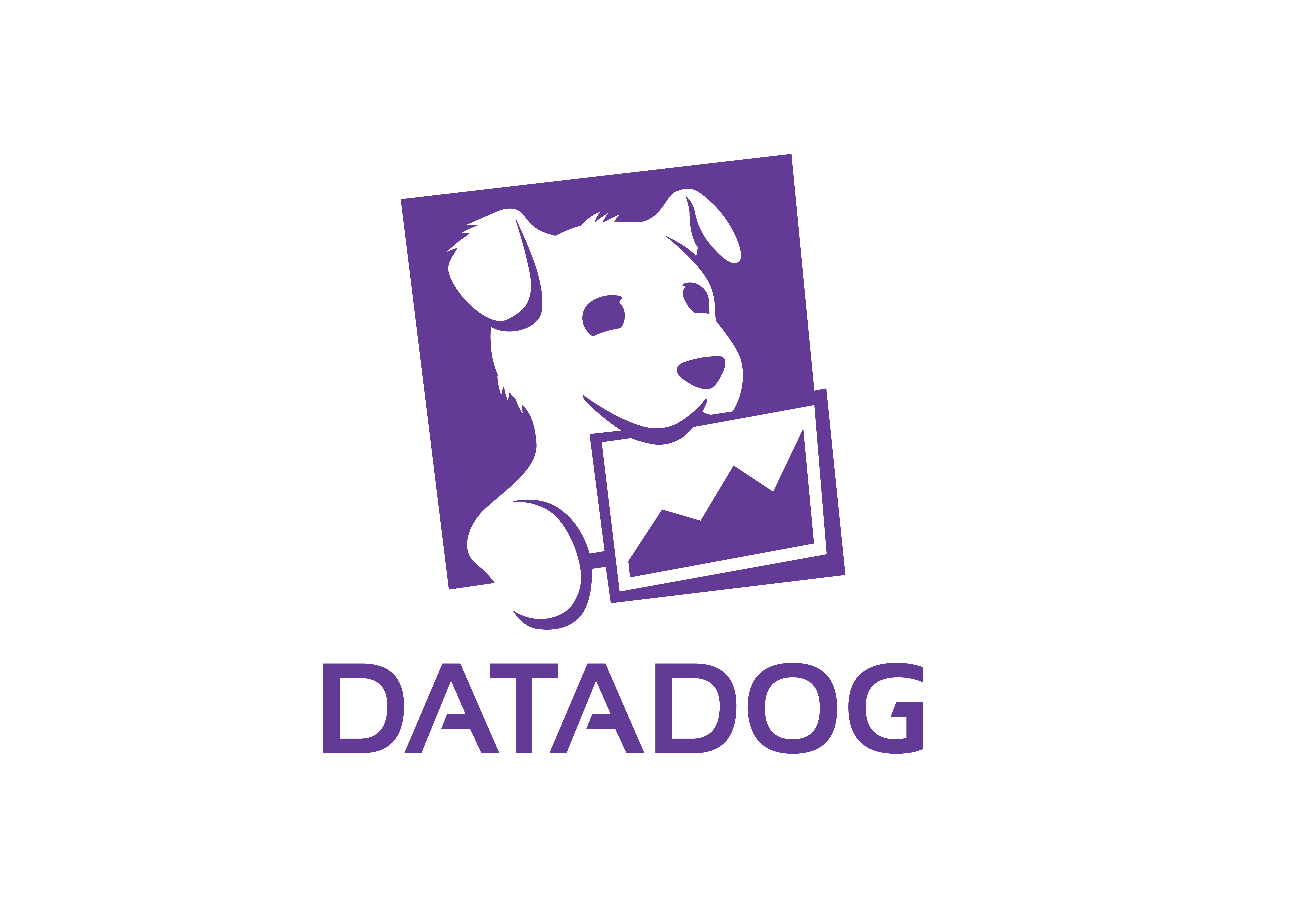 Top dog! Auckland IT company named Datadog Gold Tier Partner