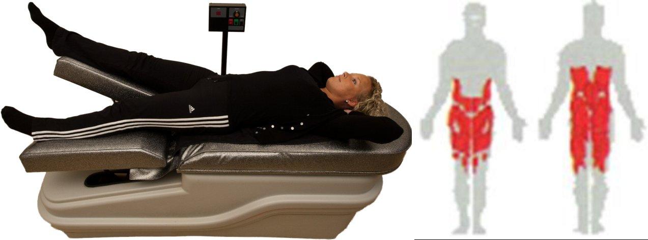 Waist Tummy Hip Table inclusief lichaamsdeel