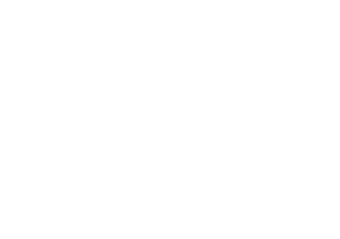 Logo blanc prael
