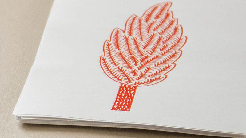 Ateliers detail feuille arbre