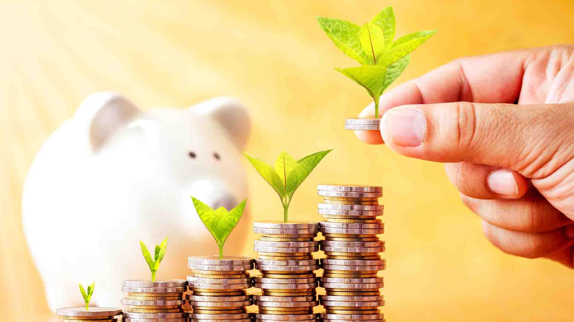 פנסיה לעובדי משק הבית: איך נדע באיזו קרן לבחור?