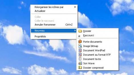 OpenSafe(pro) - Raccourci vers le bureau - 1.1