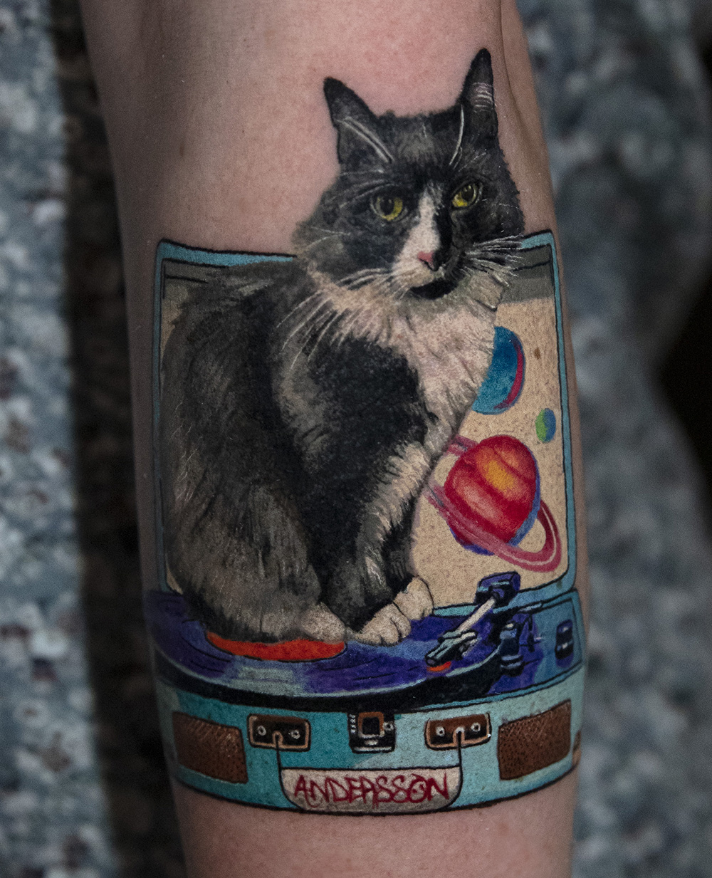 cat tattoo by Mikhail Andersson