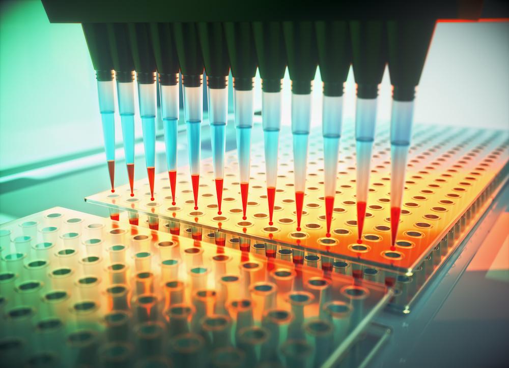 Stem Cell Reprogramming