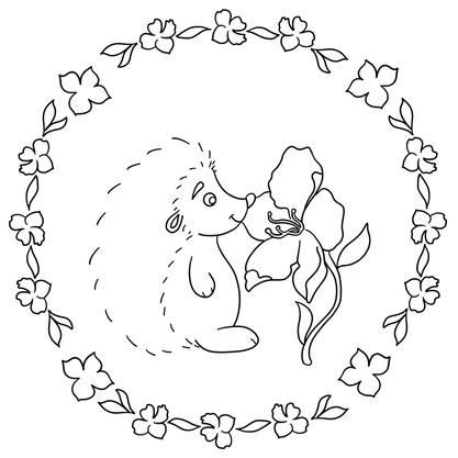 hérisson illustration procreate gratuit