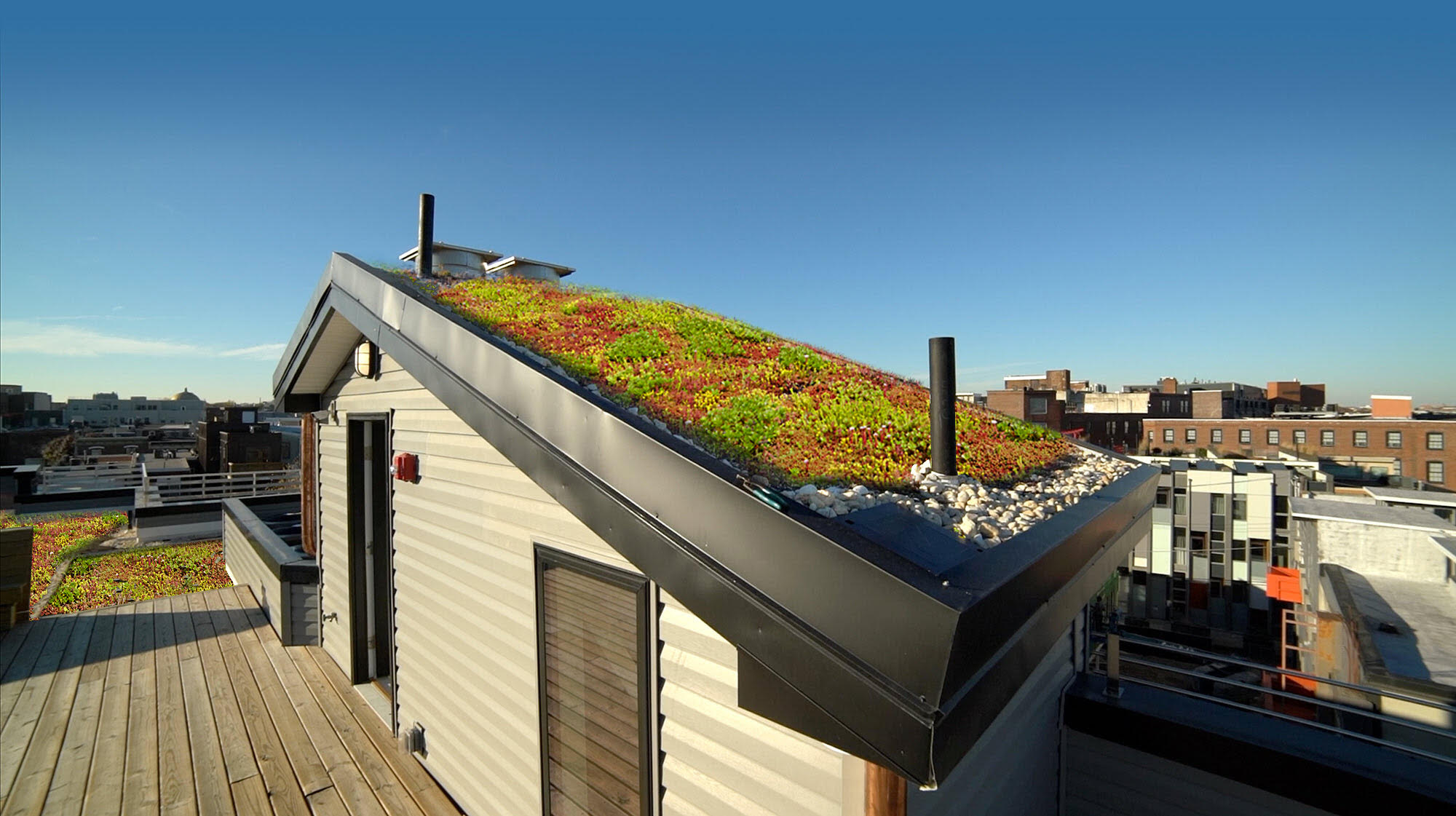 Green Roof Pilot House on Residential Building in Northern Liberties FUSA Designs #livingcityarch