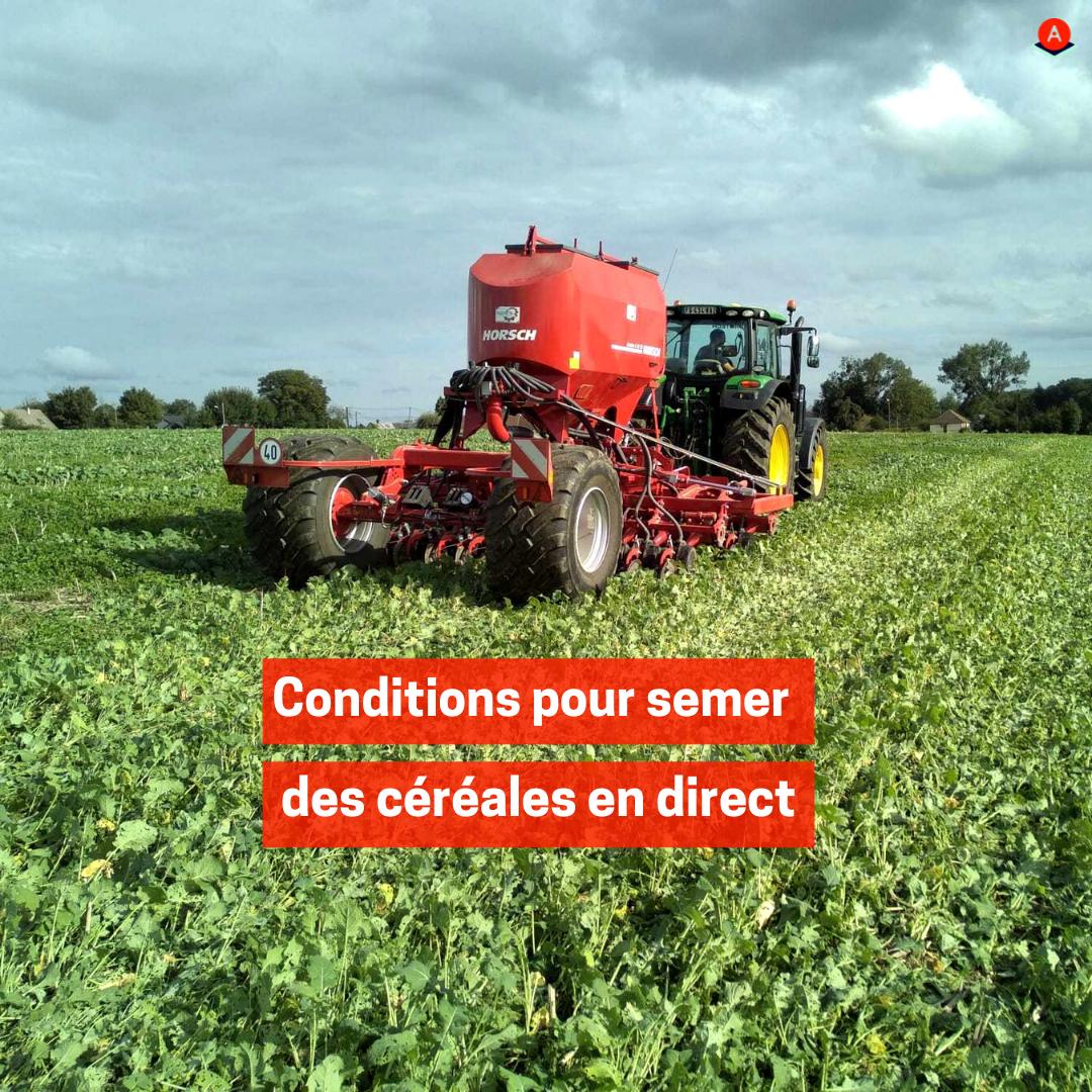 Conditions pour semer des céréales en direct