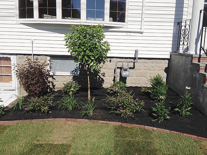 new england landscaper Arlington, MA plantings