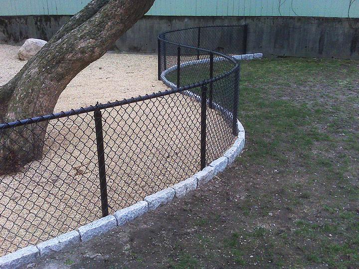 new england landscaper Medford, MA pea stone dog area, curved cobblestone edge, curved chain link fence
