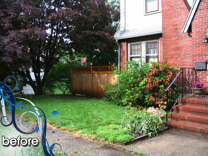 new england landscaper Medford, MA before: plantings, hydroseed