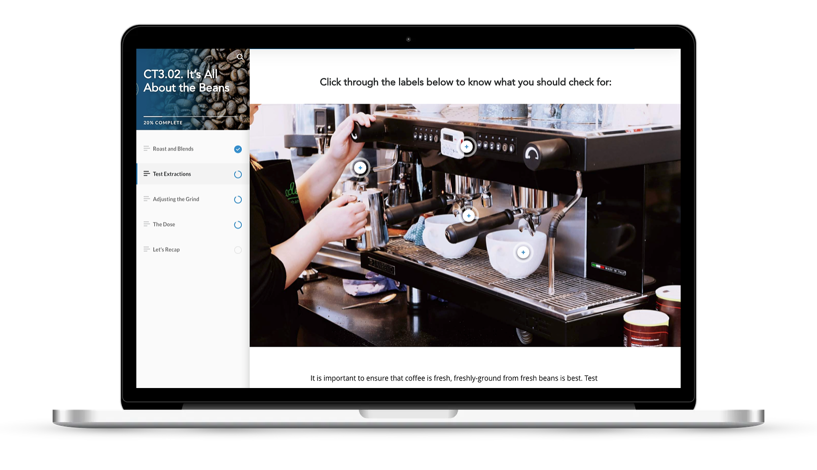 Coffee training course built in Rise in Sydney