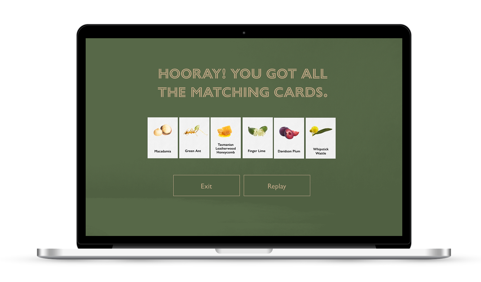 Match 6 cards of the Australian Native Collection in this gamified elearning developed in Storyline!