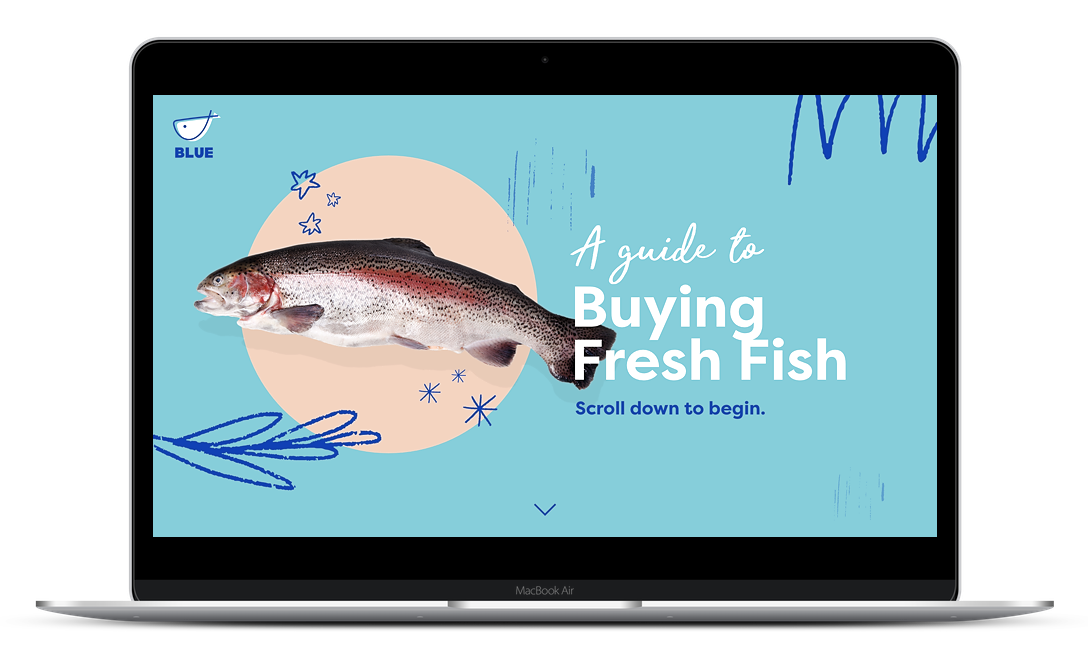 Fish photo on a circle and light blue background. The text says a guide to buying fresh fish, scroll down to continue.
