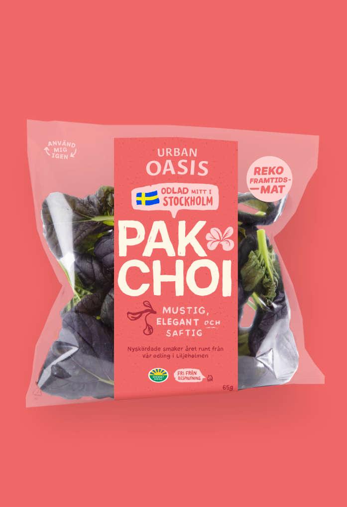 Pak Choi Urban Oasis