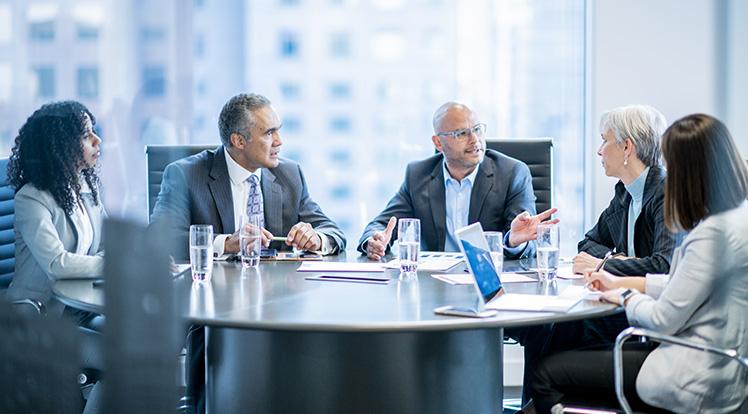 The Board Of Directors: Board Meetings