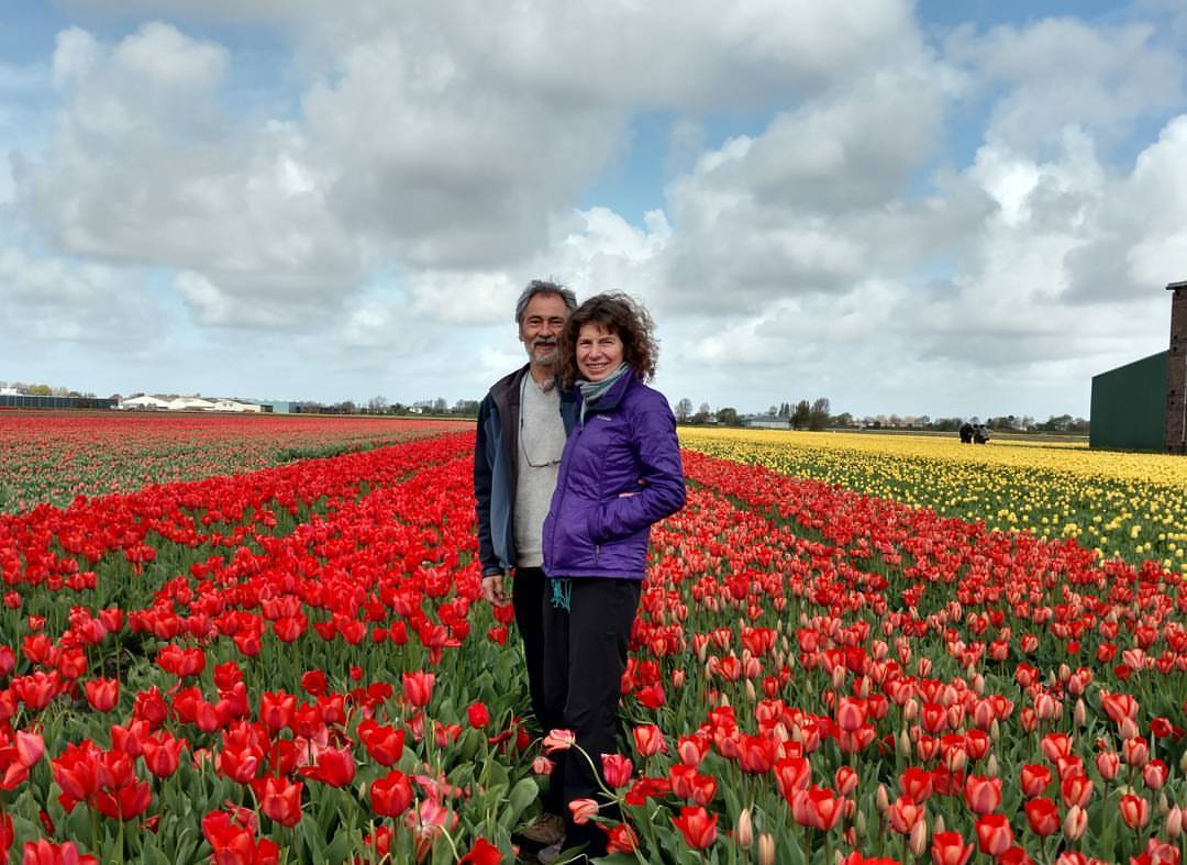 Kate Vogel and John Littleton standing in a field of tulips.