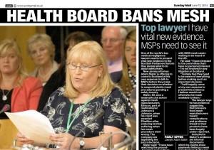Elaine Holmes testifying to Parliament