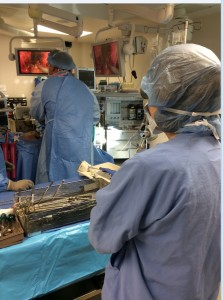 In the OR, Miklos and Moore