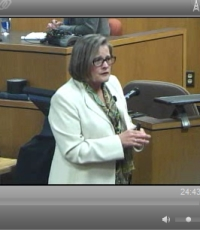 Ethicon attny, Christy Jones during Linda Gross trial, Feb. 2013