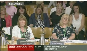 We Are Mesh Survivors, testifying to Parliament