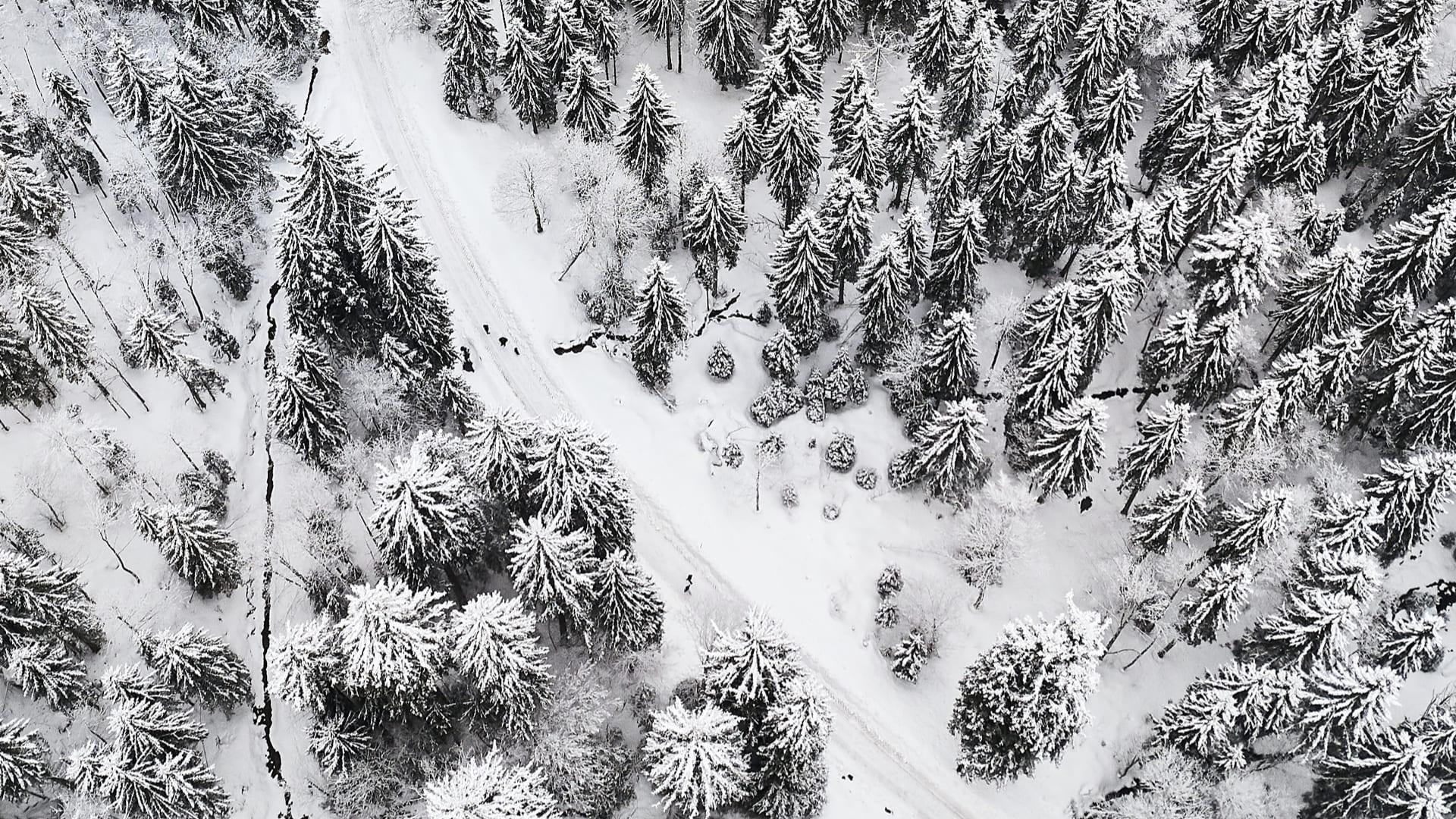 contraste paris neige