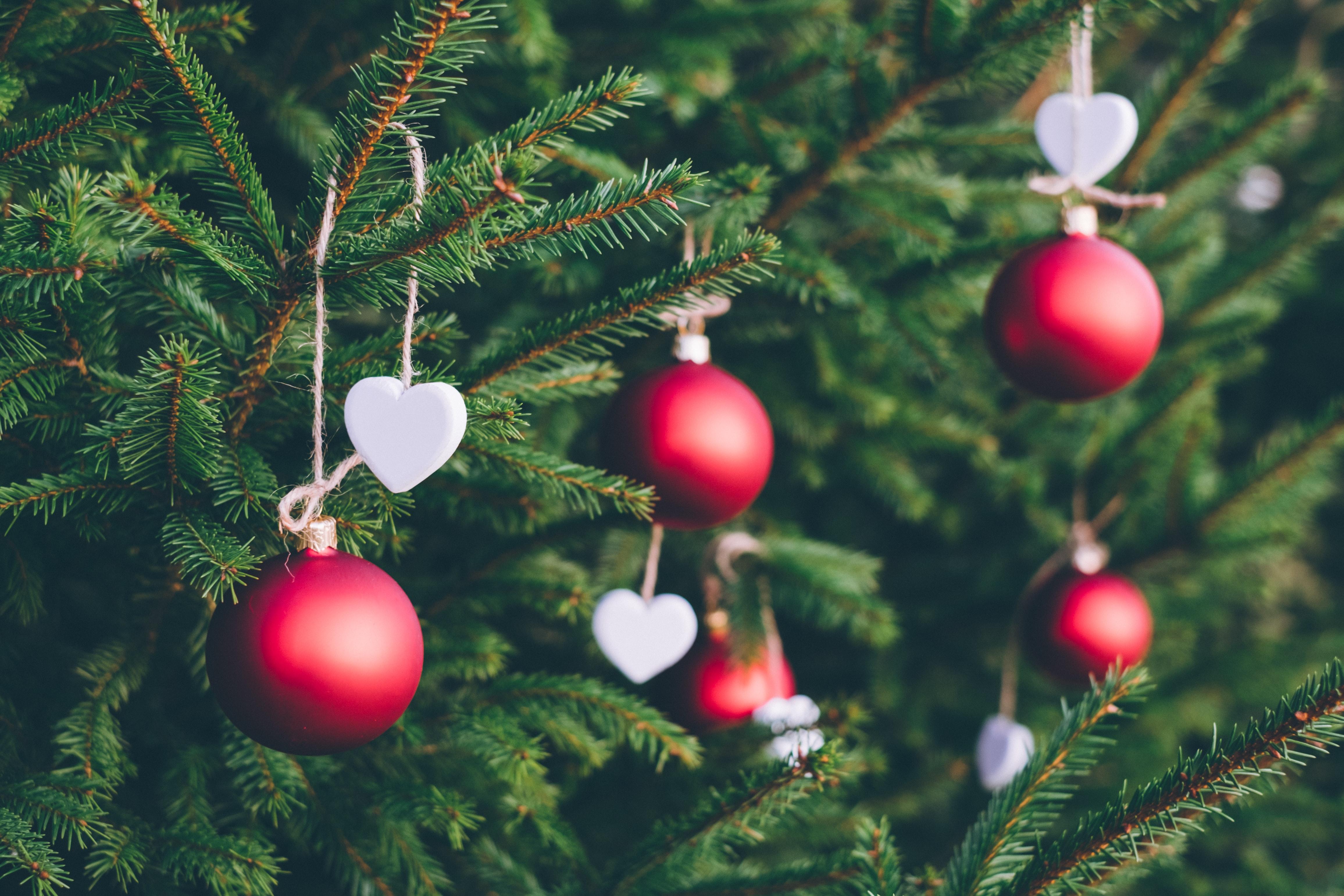 Christmas Decor Setup Day