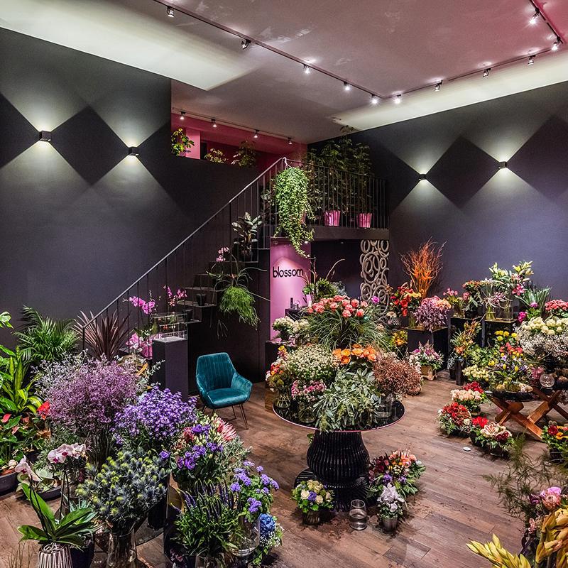 Diese exklusive Raumausstattung hält viele Überraschungen bereit. So vergrößert der verspiegelte Tresen mit Marmorplatte den Raum, vervielfacht das Blumensortiment und sorgt für ein luxuriöses und prunkvolles Ambiente. Die Blumen werden zum Einrichtungsgegenstand und zeigen sich von ihrer besten Seite. Hochwertige Beistelltische aus Kirschholz, prachtvolle Präsentiertische und ausgeklügelte Licht- und Farbsysteme verwandeln die Gewerbefläche in eine gemütliche und wohnliche Verkaufsfläche.