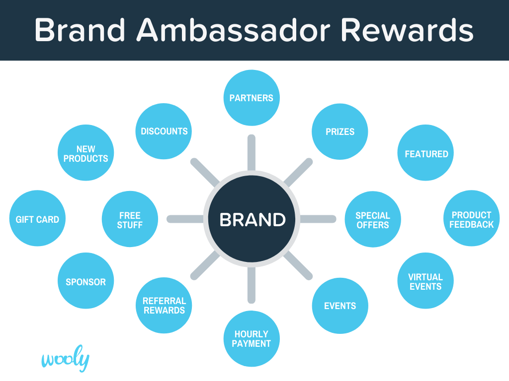 what does a brand ambassador make?